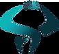 logo sans fond sans ecriture.png