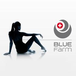 Swiss Blue Farm