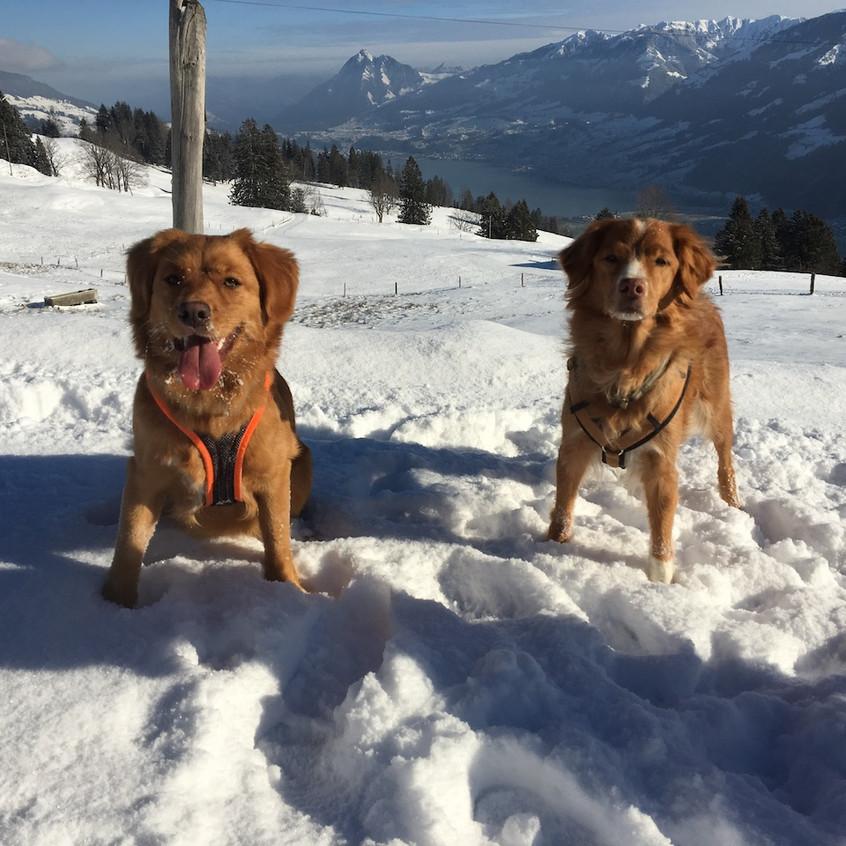 Indira und Zenibaa