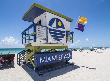 Miami Apartment Hunting Guide