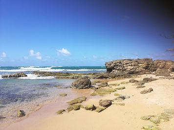 puerto rico beach.jpg