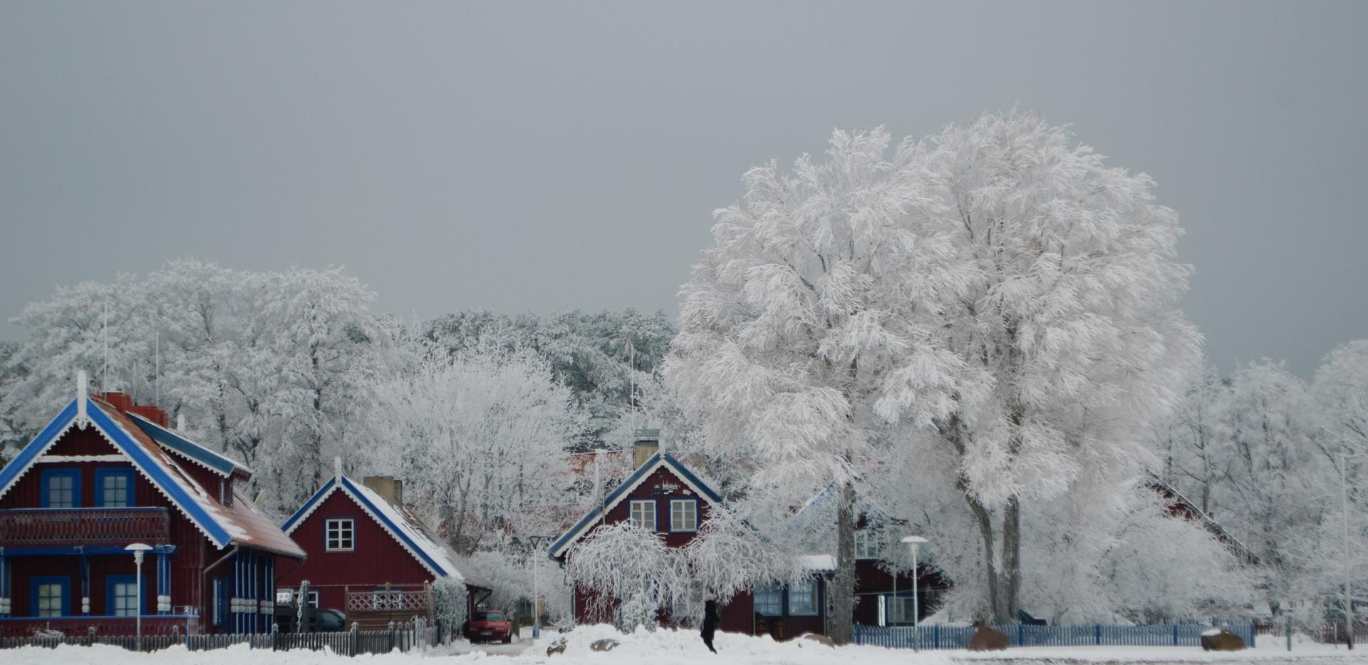 Nida_in_winter.jpg