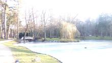 Однажды в феврале в Паланге
