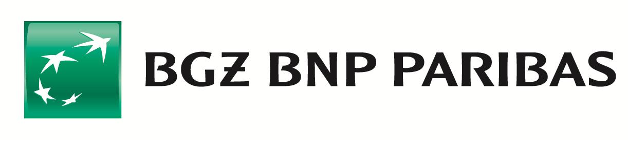 bgz_bnpp_bl_q1.png