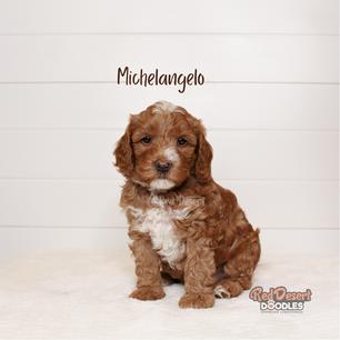 Michelangelo.png