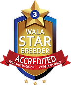 Red Desert Accredited Logo 2021.png