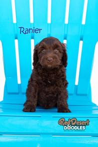 Ranier Cropped.jpg