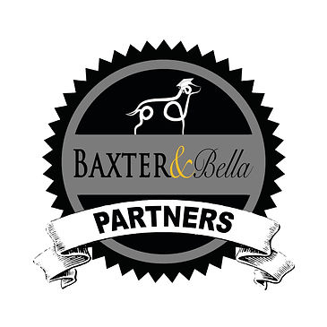 B&B PARTNERS Logo.jpg