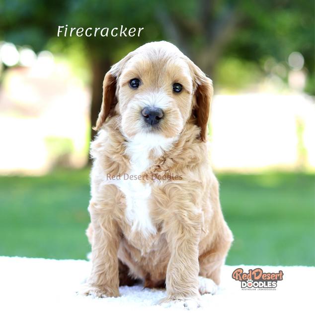 Firecracker.png