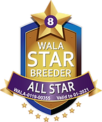 Red Desert All Star 2021 (2).png