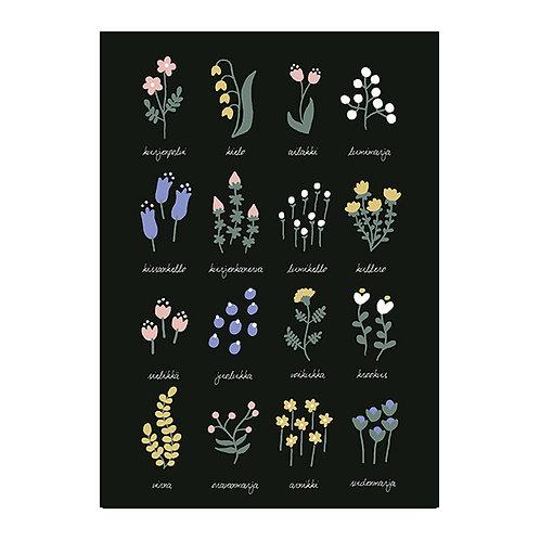 フィンランドの野の花 (Finnish Wild Flowers)