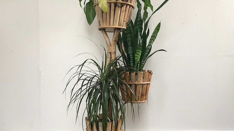 Mid Century Bamboo Plant Stand - Boho Plant Stand