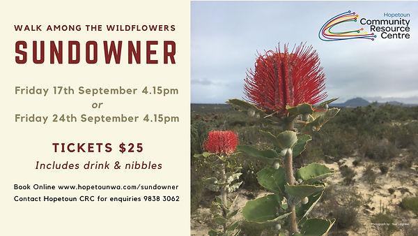 Walk Among The Wildflowers Sundowner FB