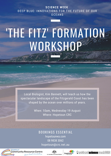 'The Fitz' Formation Workshop.png