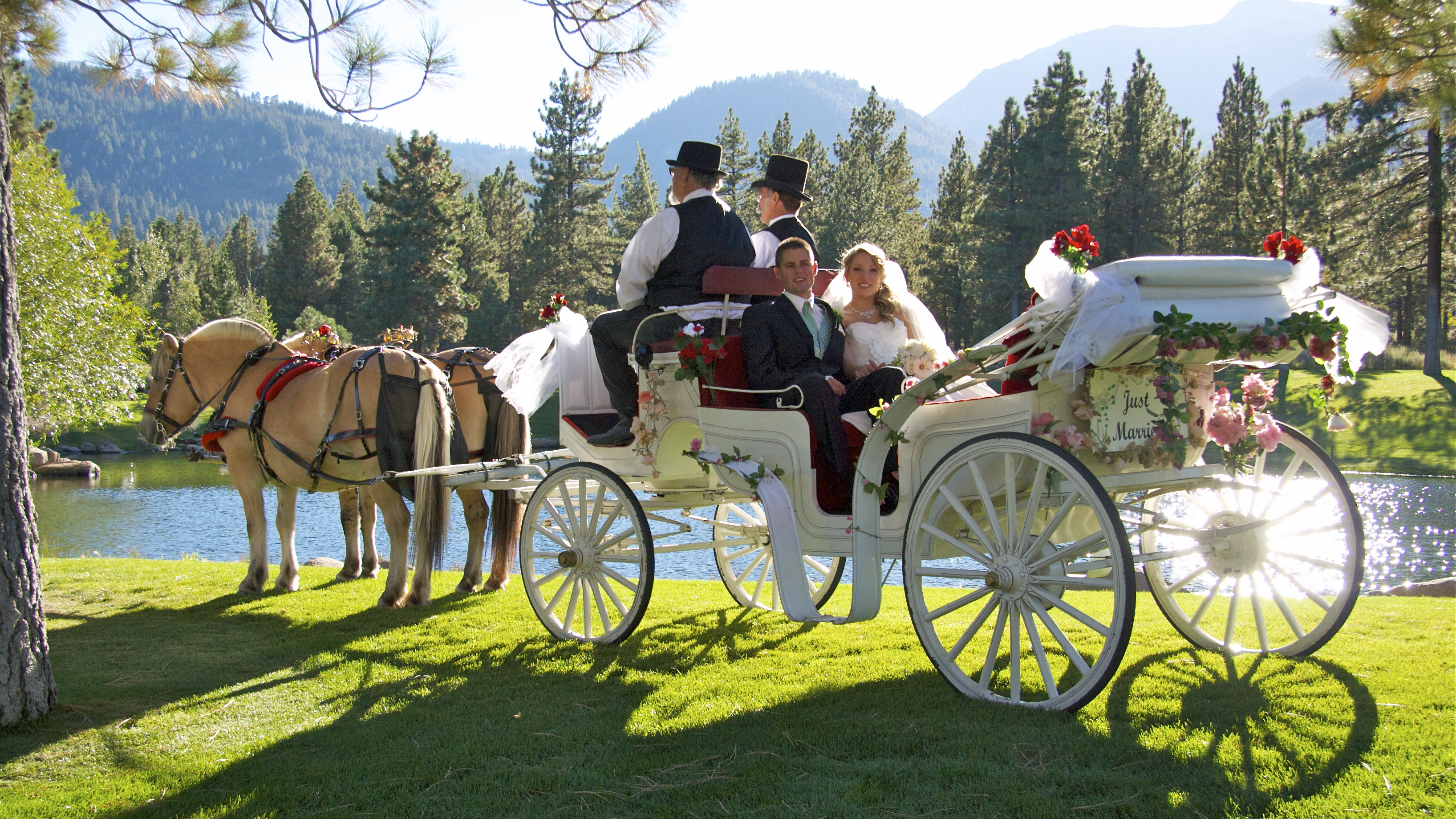 Wedding Photographer Bride and Groom 101