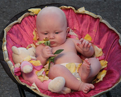 Baby Photographer_4800