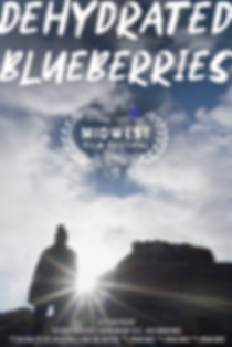 Dehydrated Blueberries Poster