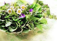 Salade-sauvage.jpg