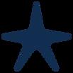 starfish blue.png