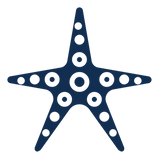 starfish blue.png