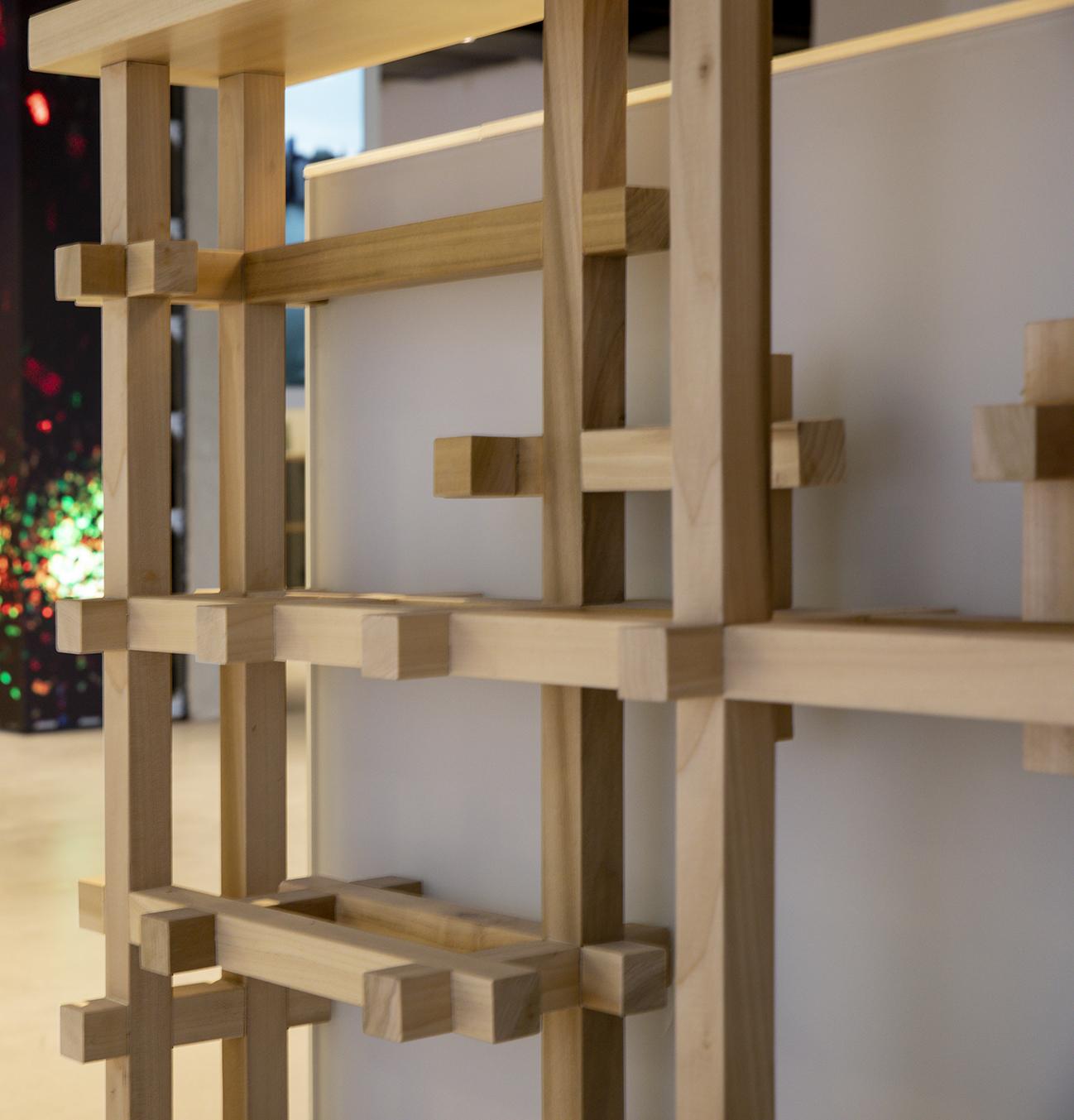 Shirli Zamir Creative Lab  By Kfir 12313