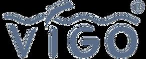 Виго лого.png