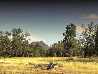 Tamworth Regional Heritage festival shows greater focus on Indigenous participation and stories