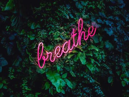 Wie du atmest, so lebst du