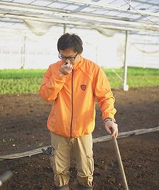 ケール畑の土づくり