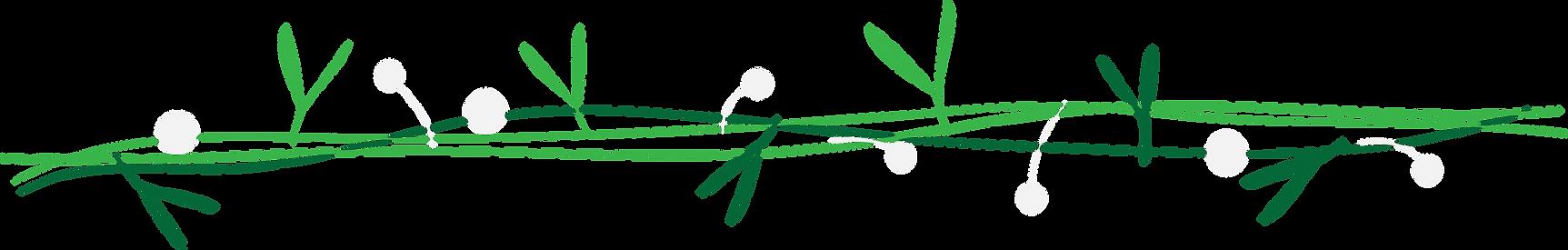 mistletoe-01.png