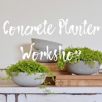Concrete Planter Workshop - Jan. 26th