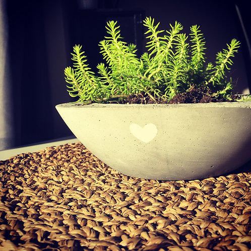 Planter Bowl Workshop - Feb. 3