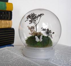 Terrarium Globe 02