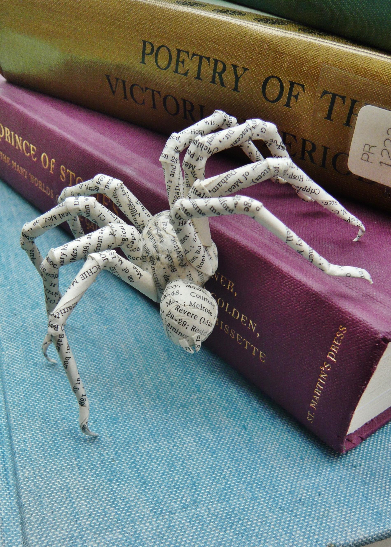 Spider 01.JPG
