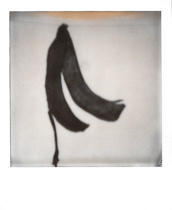 Happy banana #2 - Exemplaire unique