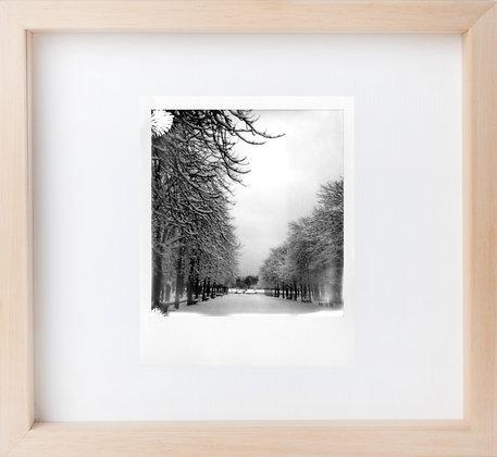Polaroid 'Il neige aussi au jardin du Luxembourg '