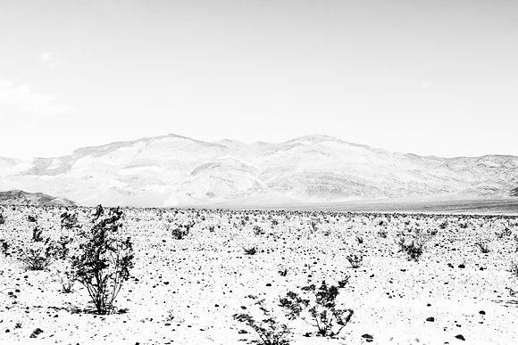 White desert, Death valley, USA