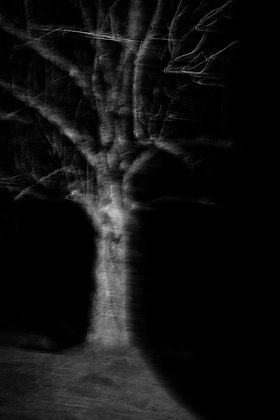 Dark night, France