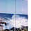 Thumbnail: Livre photo 'Polaroid Summertime' 2020
