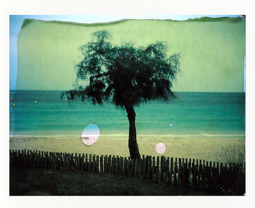 POLAROID LAND 250 - Cavalière, Var, France