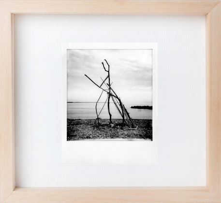 Polaroid 'Tree man'