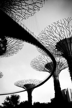 Garden by the bay, Singapour