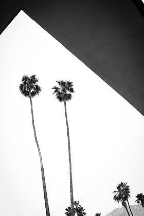 Black twins, Palm springs, Californie, USA