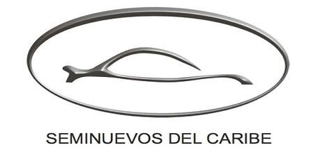logo seminuevos.jpg