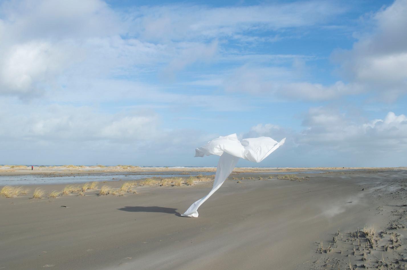 In de wind 7