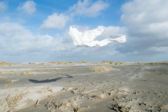 In de wind 4