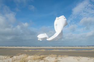 In de wind