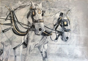 Robert's Percherons by Rosy Burke.jpg