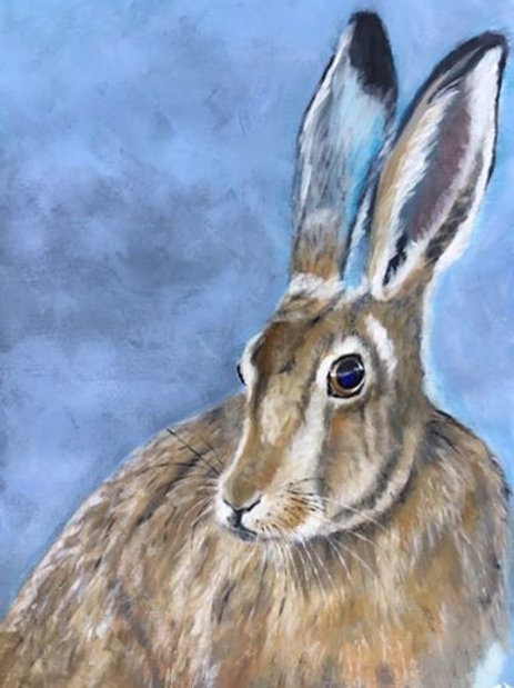 JB Brown hare blue eyes