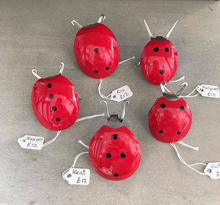 Kat ladybirds.jpg